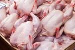 مرغ کیلویی چند؟/ سوء تدبیر در قیمت گذاری صنعت مرغ