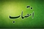 رییس جدید شبکه بهداشت و درمان مسجدسلیمان منصوب شد