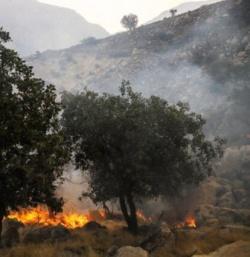 آتش سوزی جنگلها و مراتع اندیکا مهار شد