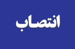 معاون درمان شبکه بهداشت و درمان مسجدسلیمان منصوب شد