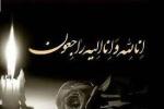 مادر شهید سلیمانی به فرزند شهیدش پیوست