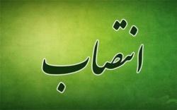 جلیلی سرپرست اداره راه و شهرسازی مسجدسلیمان شد